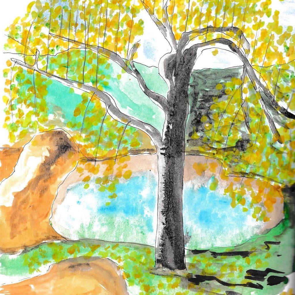 Pommier au jardin plutôt à l'automne, petit étang en arrière plan.